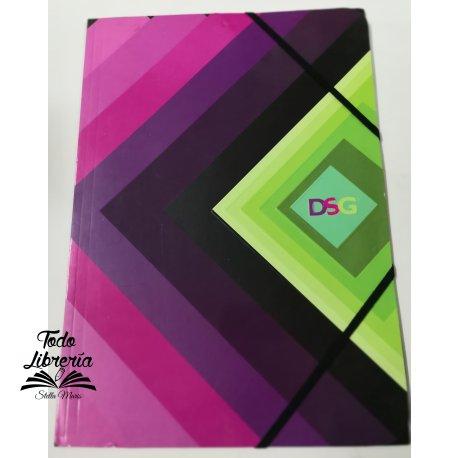 Carpeta 3 solapas con elástico DSG